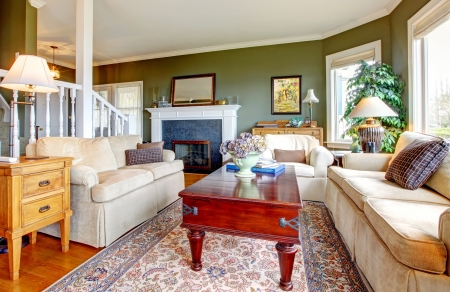 Classic  green living room with nice furniture, fireplace  and many windows  Stock Photo - 16752249