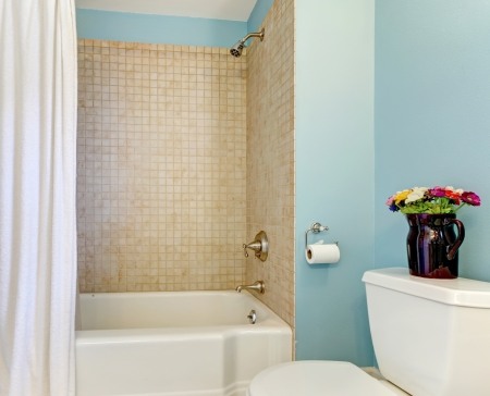 Nely renovated blue bathroom with shower and tub  photo