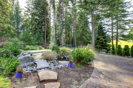 Backyard landscape with pine trees and stone steps to pond. photo