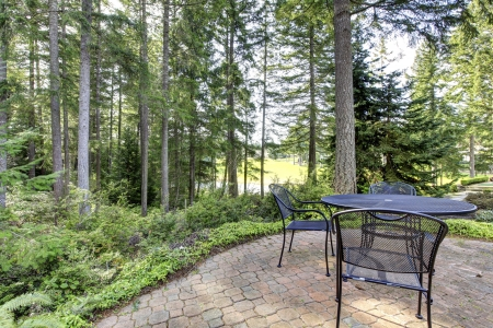 Backyard with pine trees and metal table with chairs. photo