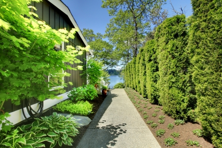 Side of the house with green landscape and walkway. photo
