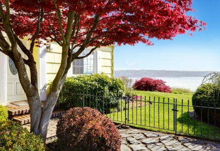 Yellow small home with water view and red maple. Stock Photo - 17124887