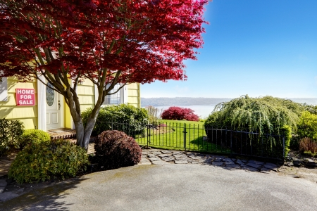 Yellow small home with water view and red maple. Stock Photo - 17124889