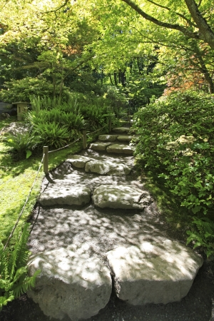 Japanese Garden in Seattle, WA. Stone trail in the woods. photo