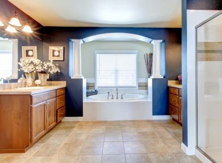 bathroom design: Dark blue classic elegant bathroom interior with columns. Stock Photo