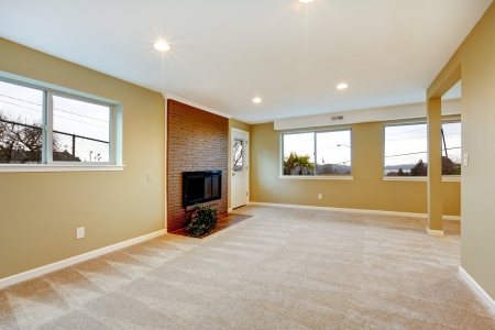 many windows: New liiving room with fireplace, beige carpet and many windows
