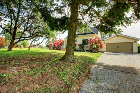 Yellow house exterior with spring blooming rhododendron Stock Photo - 17870111