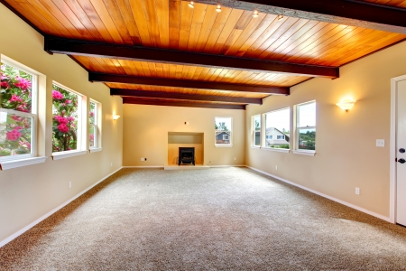 wood ceiling: New large empty living room with wood ceiling and fireplace.
