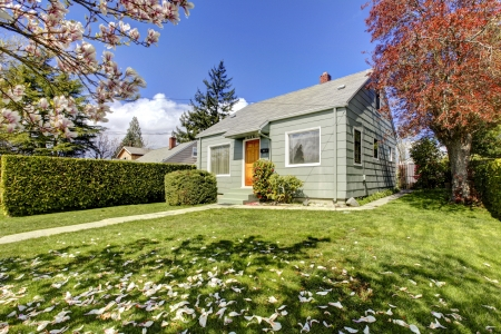 Small green house exter with spring blooming magnolia trees. American house build in 1942. Stock Photo - 18174487