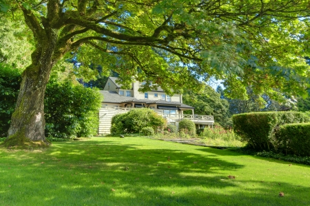 big windows: Large brown house exterior with large tree and summer garden. Northwest.