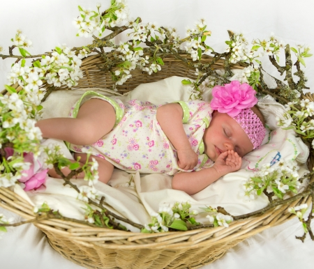 Baby girl sleeping inside of basket with spring flowers  4 weeks old  photo