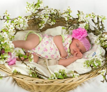 baby girl pink: Baby girl sleeping inside of basket with spring flowers  4 weeks old