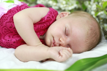 Baby girl of one month sleeping  in pink with spring flowers  Stock Photo - 20112418