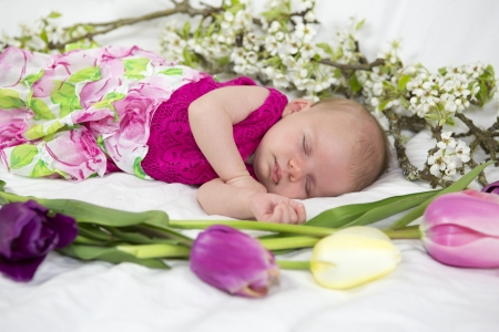 Baby girl of one month in pink with tulips spring flowers  photo