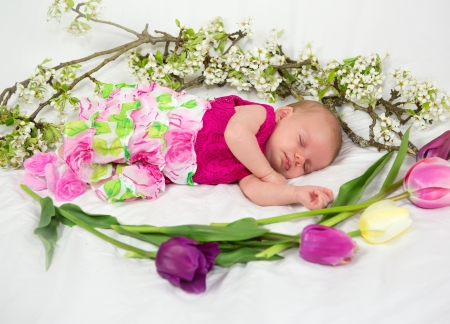 Newborn Baby girl in pink with spring flowers  4 weeks old  Stock Photo - 20112420