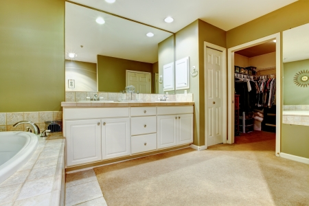Green and white bathroom with two sinks and closet. Stock Photo - 20992973