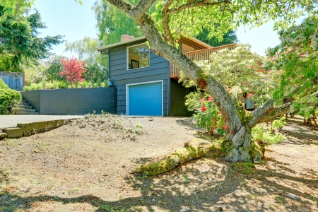 curb appeal: Small blue house with garage and large front yard with spring trees.