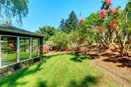 Garden studio house with windows and flowering bushes. Stock Photo - 20993033