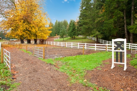 Northwest horse rach with fall changing leaves and white fence. Stock Photo - 23131484