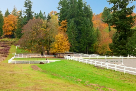 Northwest horse rach with fall changing leaves and white fence. Stock Photo - 23131486