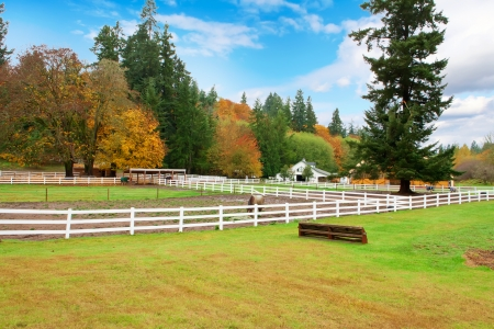 Northwest horse rach with fall changing leaves and white fence.