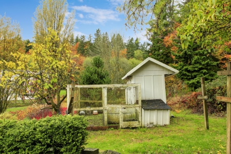 coop: Northwest horse rach with fall changing leaves. Small white chicken coop house with protected outdoor area.