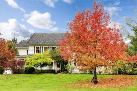 Northwest horse ranch white house with fall changing leaves and white fence. Reklamní fotografie