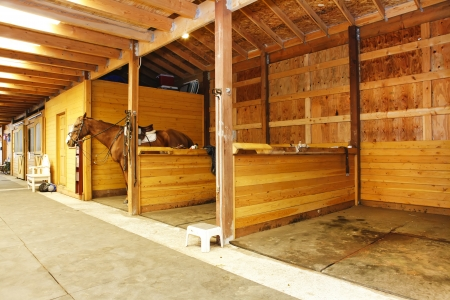 Large horse farm stable interiors.