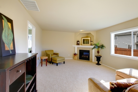 Cute light furnished living room with a fireplace photo