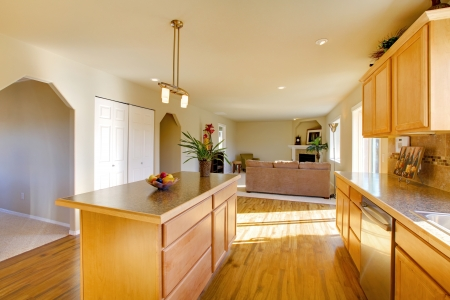 countertops: Light big dining room with hardwood floor and wooden cabinets