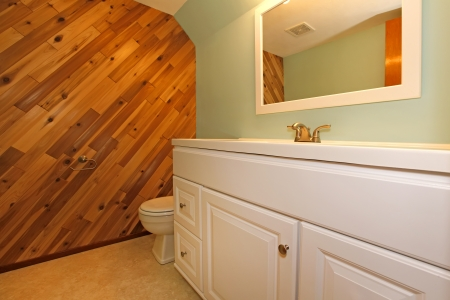 Light tones bathroom with a wooden panel and olive wall photo