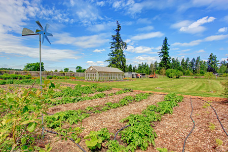 fenced: Fenced farm field with green house and garden bed