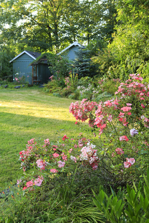 Farm house backyard with wood sheds, attached garden house,  flourishing flower bed Stock Photo