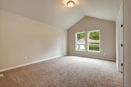 柔らかい色空ルーム valted 天井、大きな窓、カーペットの床