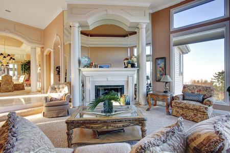 view of an elegant living room: Luxury living room