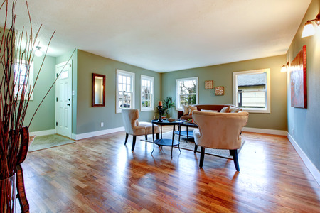 classic living room: Furnished classic living room with hardwood floor, aqua color wall and decorative dry branches