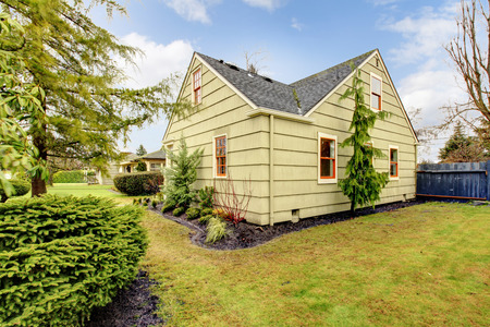 fenced: Fenced backyard with lawn and fir trees Stock Photo