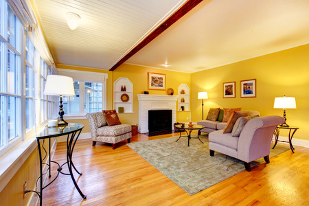 Bright furnished living room with designed ceiling and yellow wall photo