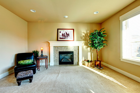 adn: Dise�o de interiores. Luminoso sal�n con chimenea, una silla de cuero negro adn �rbol docorative