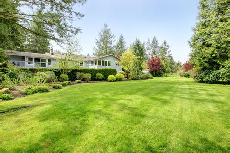 Verbazingwekkende boerderij achtertuin met groene gazon, dennen, struiken en heggen Stockfoto - 25974399