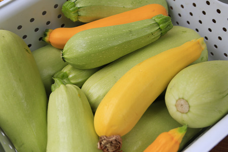 The whole basket of gathered home squashes  Banco de Imagens