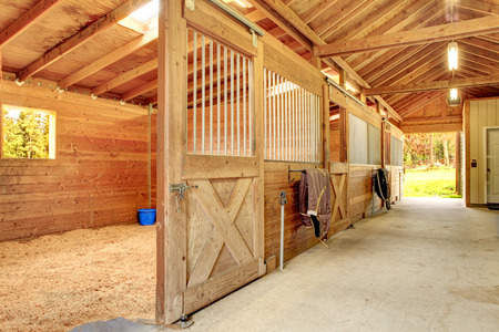 horse stable: Stable barn with beam ceiling and open door to a clean stall.