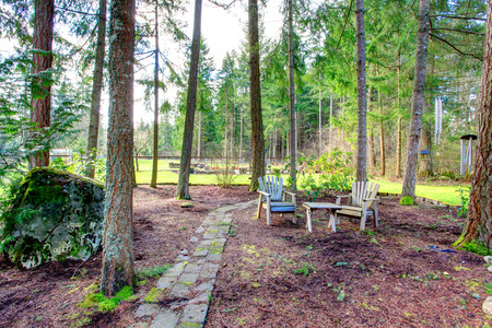 Picturesque countryside outdoor area surrounded by fir trees. photo