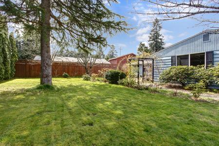 Big Backyard blue siding house with big backyard with green lawn and fir tree