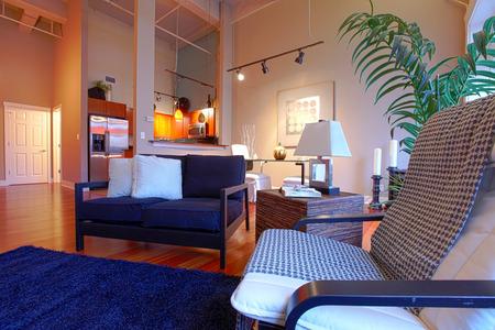 view of an elegant living room: View of modern reconstructed living and kitchen room from a corner. Close up view of tropical pleated chair and palm tree Stock Photo