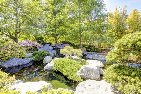 Japanese garden in San Diego early spring bloom during sunny day  photo