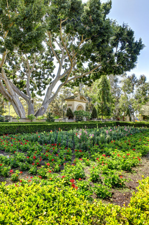 balboa: Historical botanical garden in San Diego  Balboa Park