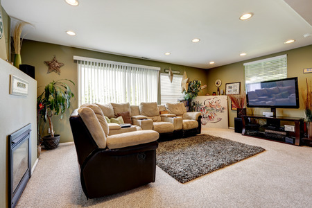 Olive walls living room with soft rug, comfortable couch set, TV and fireplace photo