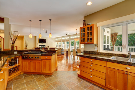 Elegant interior. Spacious kitchen room. View of large living room photo