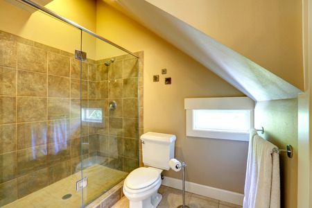 vaulted: Vaulted ceiling small bathroom with window  View of white toilet and glass door shower